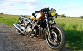 """XJR 1300 """"GOLD ARROW"""""""